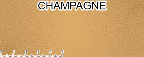 Champagne Top Grain Leather