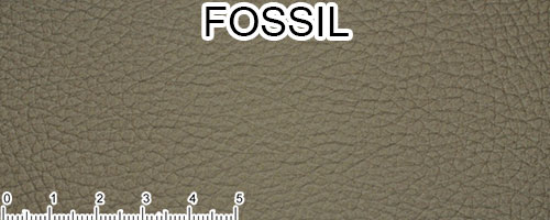 Fossil Top Grain Leather