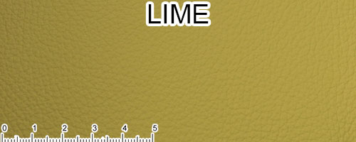 Lime Top Grain Leather